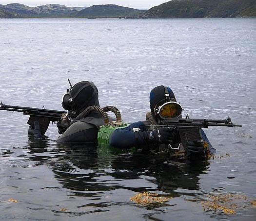 армейские водолазы