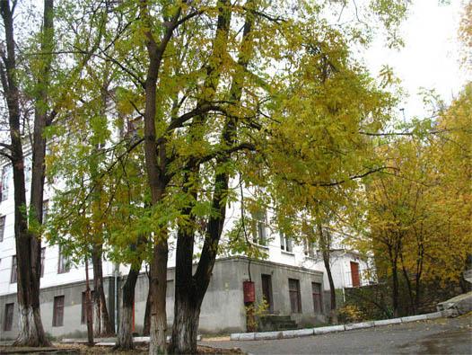 18 школа, Севастополь