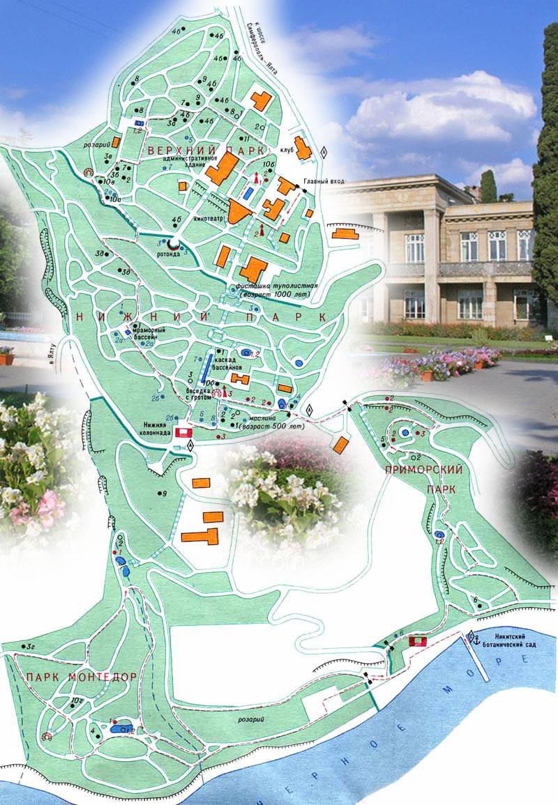 Никитский ботанический сад - карта