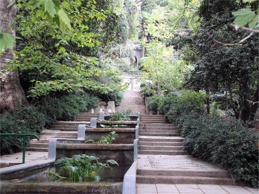дорожки в Никитском Ботаническом саду