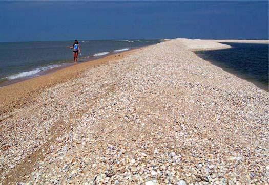 Азовское море с косой