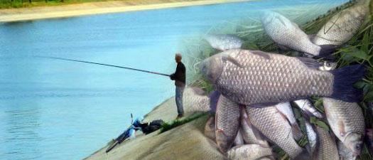 Северо-Крымский канал и рыбалка